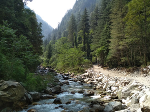 Journey To the Mountains Of Sar Pass: Trek From Kasol To Grahan Village