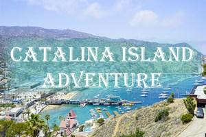 A Weekend at Catalina Island - KavaraStories