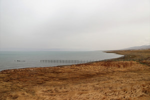 Journey to Qinghai and Gansu, visiting very beautiful Qinghai lake and colorful Danxia
