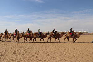 Trip to the grasslands and desert of Inner Mongolia