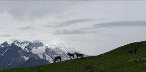 Bhrigu Lake Trek-#Take me to Himalayas