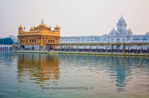 Eat, Pray, Love! A weekend getaway to Amritsar - Name Place Animal Thing