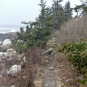 Herring Cove Road 1/undefined by Tripoto