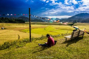 ZIRO FESTIVAL OF MUSIC - India's Tomorrow land - Curious Foots