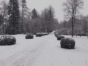 Snowy Mornings at Schloss Ambras ,Innsbruck
