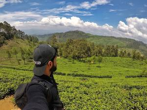 Tea Plantation at Lipton Seat in Sri Lanka #SelfieWithAView #TripotoCommunity