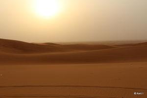 Desert Safaris Dubai - Oud Metha - Dubai - United Arab Emirates 1/undefined by Tripoto