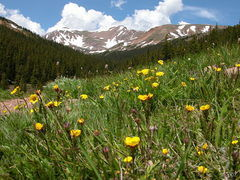 Loveland Pass Rd 1/undefined by Tripoto