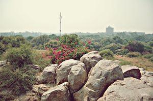 Jawaharlal Nehru University 1/2 by Tripoto