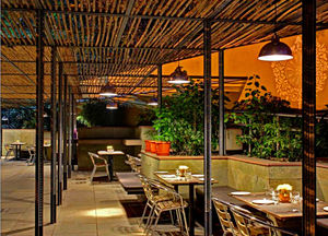 Cafe Lota 1/undefined by Tripoto