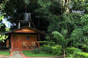 Grooving to Nature's tune at Periyar Tiger Reserve