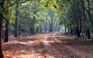 Cotigao Wildlife Sanctuary 1/2 by Tripoto