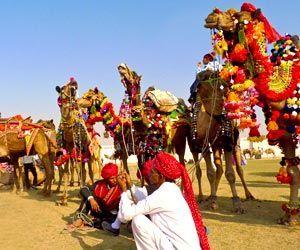 Pushkar Fair Ground 1/1 by Tripoto