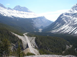 Icefields Parkway 1/undefined by Tripoto