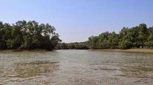 Bhitarkanika National Park 1/undefined by Tripoto