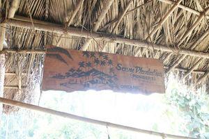 Savoi Plantation 1/undefined by Tripoto
