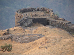 Shreevardhan Fort 1/undefined by Tripoto