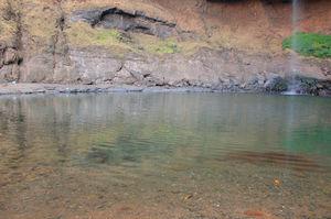 Devkund Waterfall 1/undefined by Tripoto