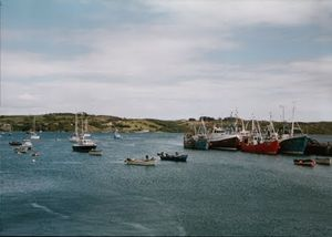 Schull 1/undefined by Tripoto