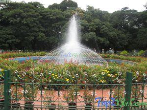 Cubbon Park 1/undefined by Tripoto