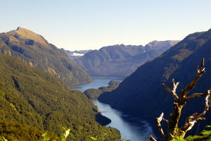 Doubtful Sound 1/undefined by Tripoto