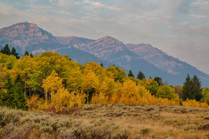 Grizzly Lake Trail 1/undefined by Tripoto