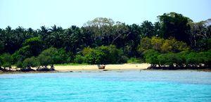 Radhanagar Beach 1/undefined by Tripoto