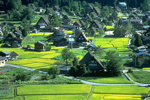 Historic Villages of Shirakawa-gō and Gokayama 1/undefined by Tripoto