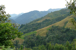 Subansiri River 1/undefined by Tripoto