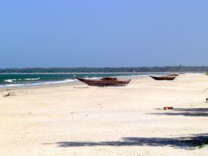 Tarkarli Beach 1/12 by Tripoto