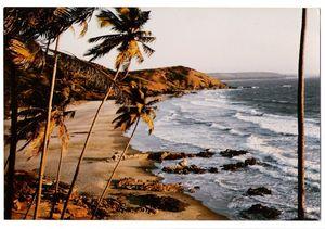 Vagator Beach 1/39 by Tripoto
