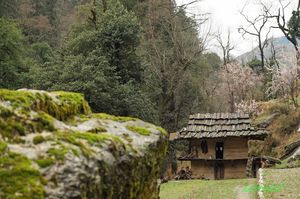 The Only Human Resident Of The Himalayan National Park Lives Without Electricity To Prove A Point