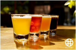 Best Craft Beer Breweries Of Mumbai