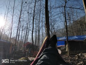 An escape to the mountains : Tirthan valley