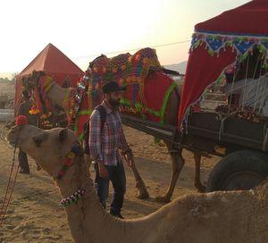 Pushkar : the real blue lotus of Rajasthan Tourism.