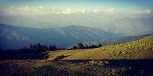 A highland meadow - Kupad Bugyal
