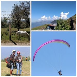 Delhi - Indrahar Pass trek - Paragliding at Bir Billing DAY 6 & 7: Part 1