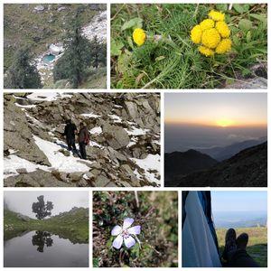 Delhi - Indrahar Pass trek - Paragliding at Bir Billing DAY 6 & 7: Part 2