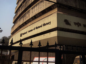 National Museum of Natural History 1/undefined by Tripoto