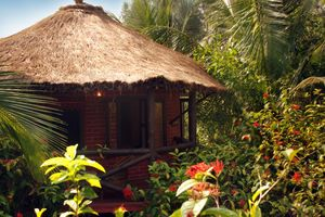 9 Eco-resorts in Sunderbans for the perfect weekend getaway from Kolkata