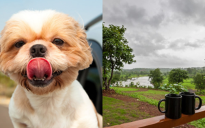 9 Gorgeous Pet-Friendly Weekend Stays Around Mumbai.