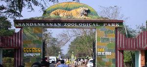 Nandan Kanan Zoo,Odisha