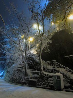 Snowy heaven.