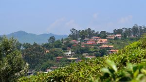 OOTY: Blessed by nature, Nurtured by British & Embraced by us