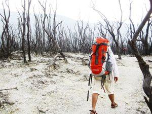 Hutan Mati 1/1 by Tripoto