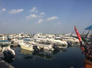 Fujairah - United Arab Emirates 1/undefined by Tripoto