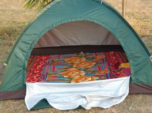 Alibaug beach camping is a perfect weekend to break your 9-5 schedule & have salty toes #quirkystay