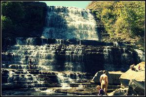 Albion Falls 1/1 by Tripoto