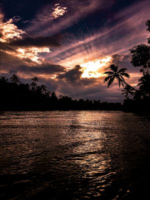 Golden hours , Kerala backwaters