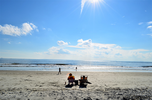 Picture travel to Hilton Head Island, South Carolina.